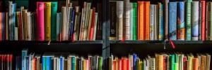 Suggestions de lecture